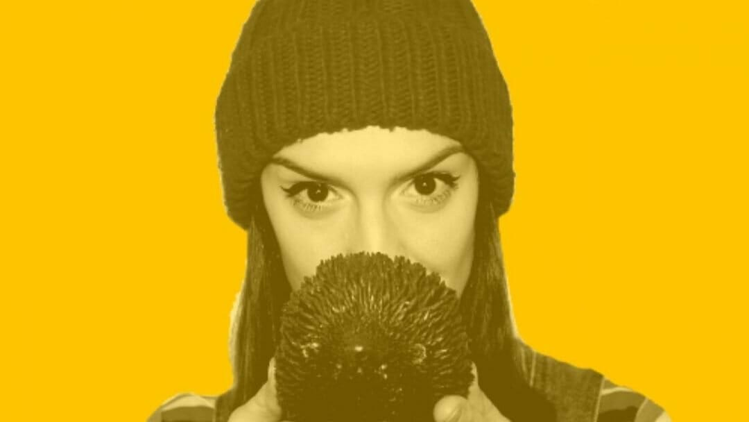 Hedgehog from Boxless Theatre at The Lion and Unicorn Theatre